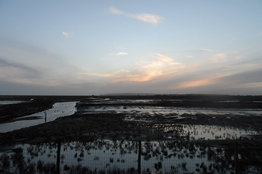 Rye--Castaway-Marshes