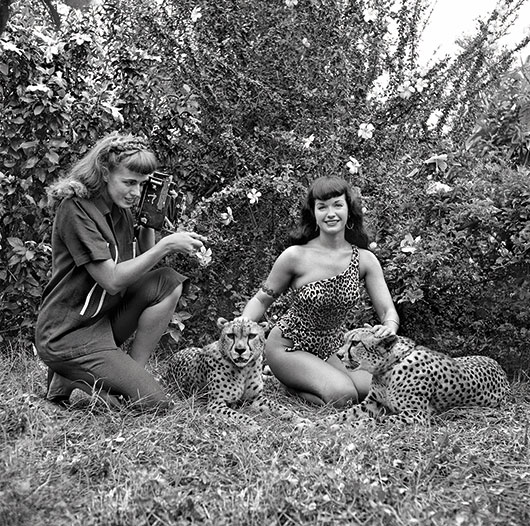 Bunny Yeager & Bettie Page with Cheetahs, 1954 © Bunny Yeager
